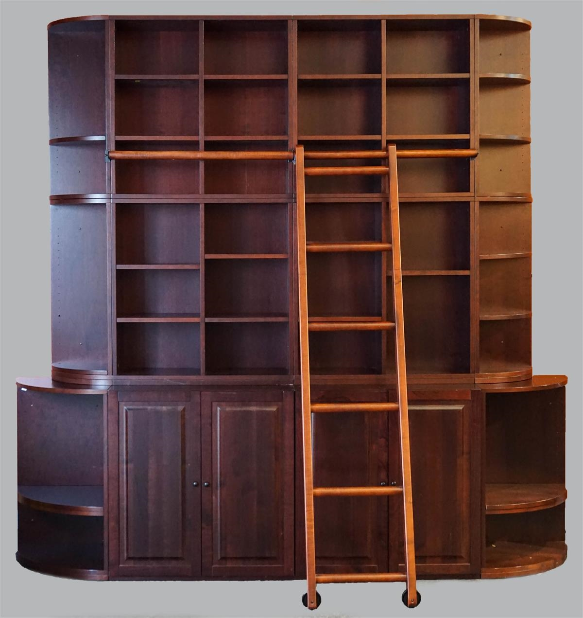 Lizell Bookcase Wall Unit With Ladder Mutualart