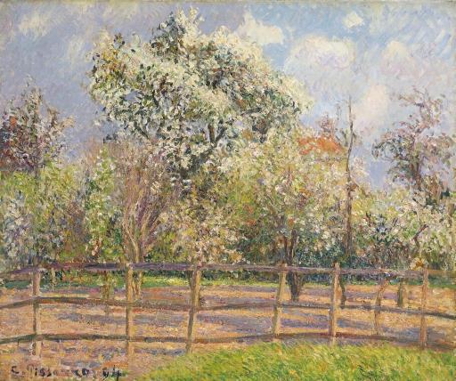 Artwork by Camille Pissarro, Poiriers en fleur, Eragny