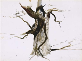 The Oak (Study for The Sentry) By Andrew Wyeth ,1949