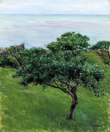 Artwork by Gustave Caillebotte, Pommiers au bord de la mer, Trouville, Made of oil on canvas