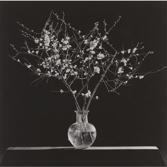 Mapplethorpe Robert Flowers Branches In Vase Mutualart
