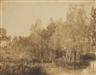 Eugène Cuvelier, Paysage au bord d'une rivière, 1852
