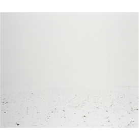 Artwork by Ori Gersht, White Scape 2, Made of c-print mounted on aluminum