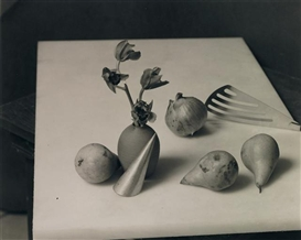 Artwork by Jan Groover, Untitled, 1983, Made of platinum print