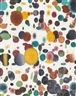 Polly Apfelbaum, Seeing Spots