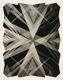 Artwork by Fred Archer, Kaleidoscopic Photogram, Made of 9 3/4 x 8in