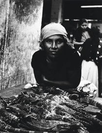 Artwork by Milton Rogovin, Untitled (iguana seller); Untitled (five women), Made of 2 photographs from his Mexico project. Toned silver prints