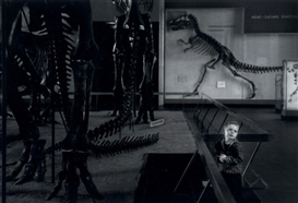 Artwork by David Heath, Untitled, (Boy in Natural History Museum), c. 1957, Made of gelatin silver print, printed later
