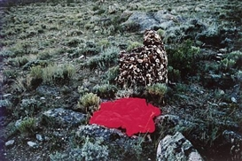 Artwork by Beverly Semmes, Red in the landscape (side view), Made of cibachrome colour photograph