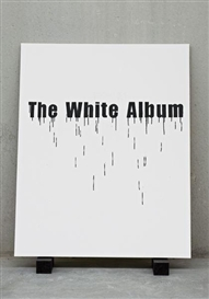 Artwork by Gardar Eide Einarsson, The White Album (Bone Black), Made of Acrylic on canvas on two painted wooden blocks