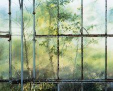 charles fréger - les fleurs du paradis, 2005,