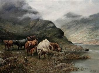 Highland cattle By Octavius T. Clark