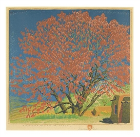 Artwork by Gustave Baumann, Cottonwood in Tassel, Made of Color woodcut