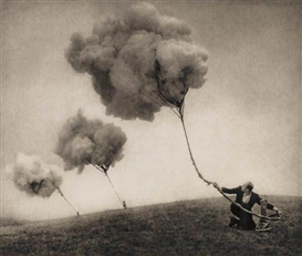 Artwork by Robert & Shana ParkeHarrison, 10 Works: Listening to the Earth and Suspension, Made of Platinum prints