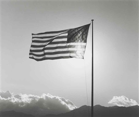 Artwork by Robert Mapplethorpe, Flag, Made of Gelatin silver print