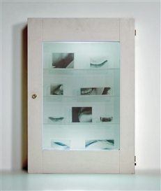 Artwork by Robert Watts, Chest with Portrait, Made of wood, glass, lucite with transparencies