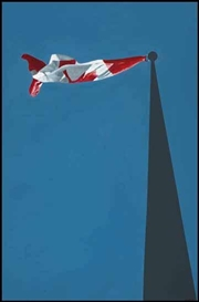 Artwork by Charles Pachter, Flag, Made of acrylic on canvas