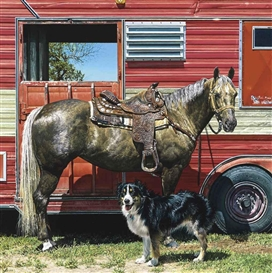 Artwork by Richard McLean, Red Rider II with Border Collie, Made of oil on canvas