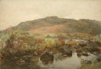A ROCKY STREAM By Mildred Anne Butler