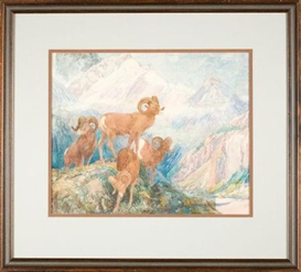 Artwork by Alexander Phimister Proctor, Big Horn Mountain Sheep, Made of Watercolor on paper