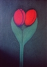 Carla do Carmo, Tulips