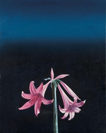Artwork by Bruce Cohen, Untitled (Pink Lilies), Made of Oil on canvas