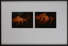 Artwork by Eve Sonneman, 2 works: Shadows, Sante Fe, New Mexico, 1978, Made of cibachrome photographs