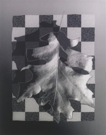 Artwork by Peter Campus, Decay, Made of gelatin silver print