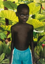 Artwork by Ruud van Empel, 7 works: World, BOX I, 2005, Made of dye distruction prints