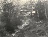 Eugène Cuvelier, Au Bas du Point de Vue du Champ, Forêt de Fontainebleau, 1862