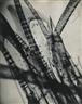 Eli Lotar, Jean Painlevé, Sans titre, de Crabes et Crevettes, 1929