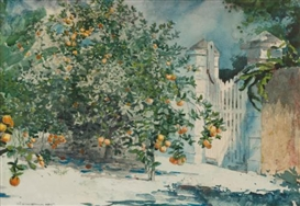 Artwork by Winslow Homer, Orange Trees and Gate, Made of watercolor on paper
