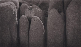 Artwork by Dick Arentz, JOSHUA TREE NATIONAL MONUMENT, CALIFORNIA, Made of Platinum palladium print