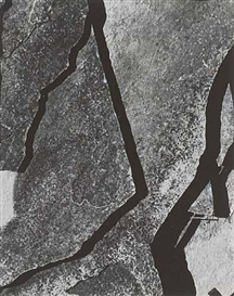 Artwork by Nathan Lyons, Abstraction [rocks], Made of Silver print