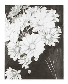 Artwork by Enoc Pérez, Flowers, Made of graphite on paper