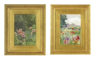2 sketches of poppies in the garden at Kilmurry By Mildred Anne Butler