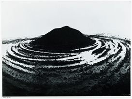 Artwork by Robert Häusser, Moor II, Made of Gelatin silver print