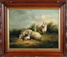 Susan Catherine Moore Waters, Sheep