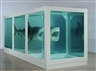 Damien Hirst: has shock art lost its bite?