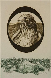Artwork by Jack Coughlin, ''Hawk and Mouse'', Made of etching and aquatint in colors