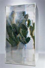 Artwork by Kohei Nawa, PixCell: Cactus, Made of Plexiglas box, prism sheet, plastic cactus