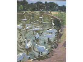 Andrew Macara, Swans on a lake