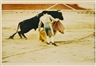 Arthur Siegel, Bullfight, Spain