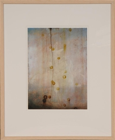 Artwork by Darren Waterston, VARIATION NO. 12, Made of Watercolor, bee's wax and oil on rag paper