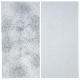 Artwork by Kohei Nawa, 2 works: DOT-ARRAY_B; DOT-FRAGMENT_B, Made of mixed media