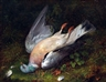 Robert Hudson, Dead Pigeon