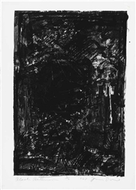 Jim Dine, Two works:Black Bathroom (Mikro 20)