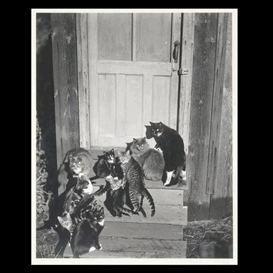 Artwork by Edward Weston, Family Group on Wildcat Hill, Made of Silver Gelatin print