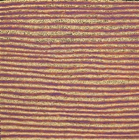 Artwork by Eileen Napaltjarri, JACK AMBLE BORE, Made of synthetic polymer paint on linen