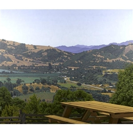 Artwork by Sandra Mendelsohn Rubin, Anderson Valley, Made of Oil on canvas